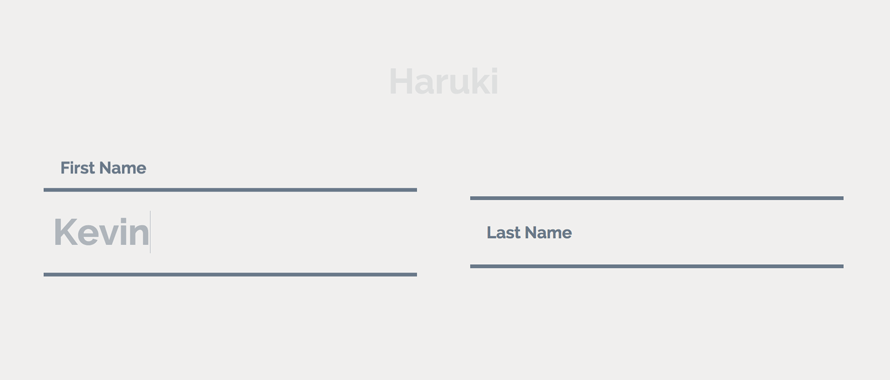 TextInputEffects_Haruki